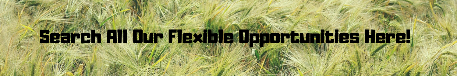 Search All Our Flexible Opportunities Here!